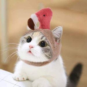 Flamingo Cat Cap!